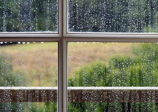Window Rain Repellent