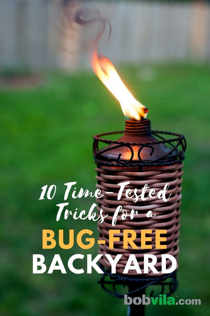 10 time tested tricks for a bug free backyard