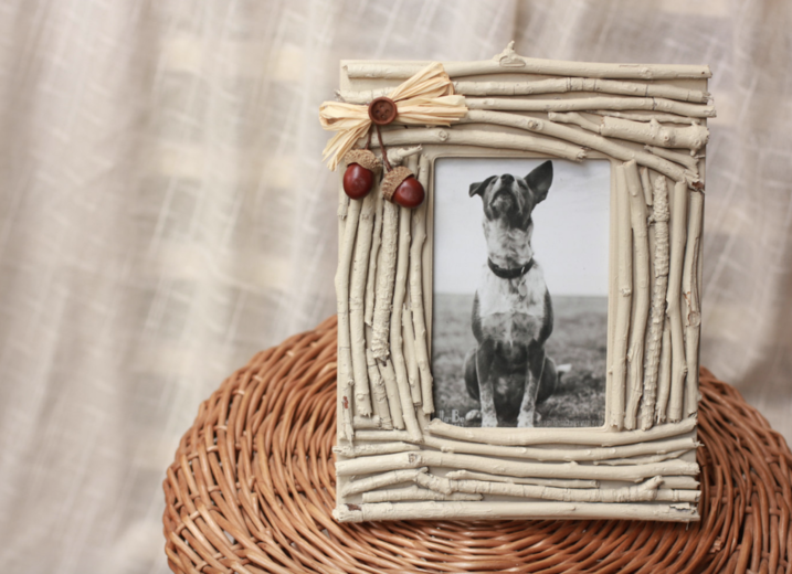 Twigged Picture Frames