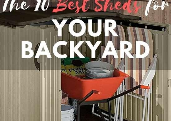 A Better Backyard