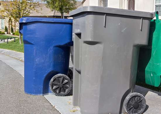 Garbage Cans and Curb Appeal