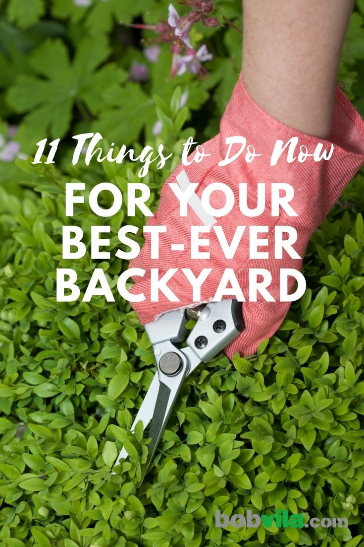 11 things to do now for your best ever backyard