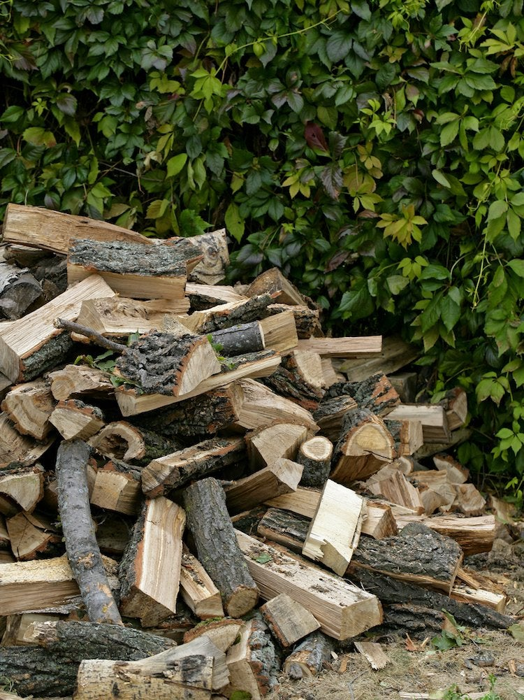 Best Firewood Which Type Burns Best Bob Vila