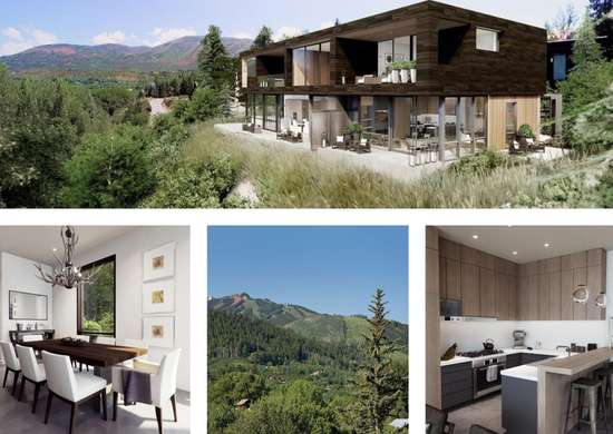 Mountain Home in Aspen, CO