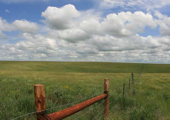 Fort Pierre National Grassland