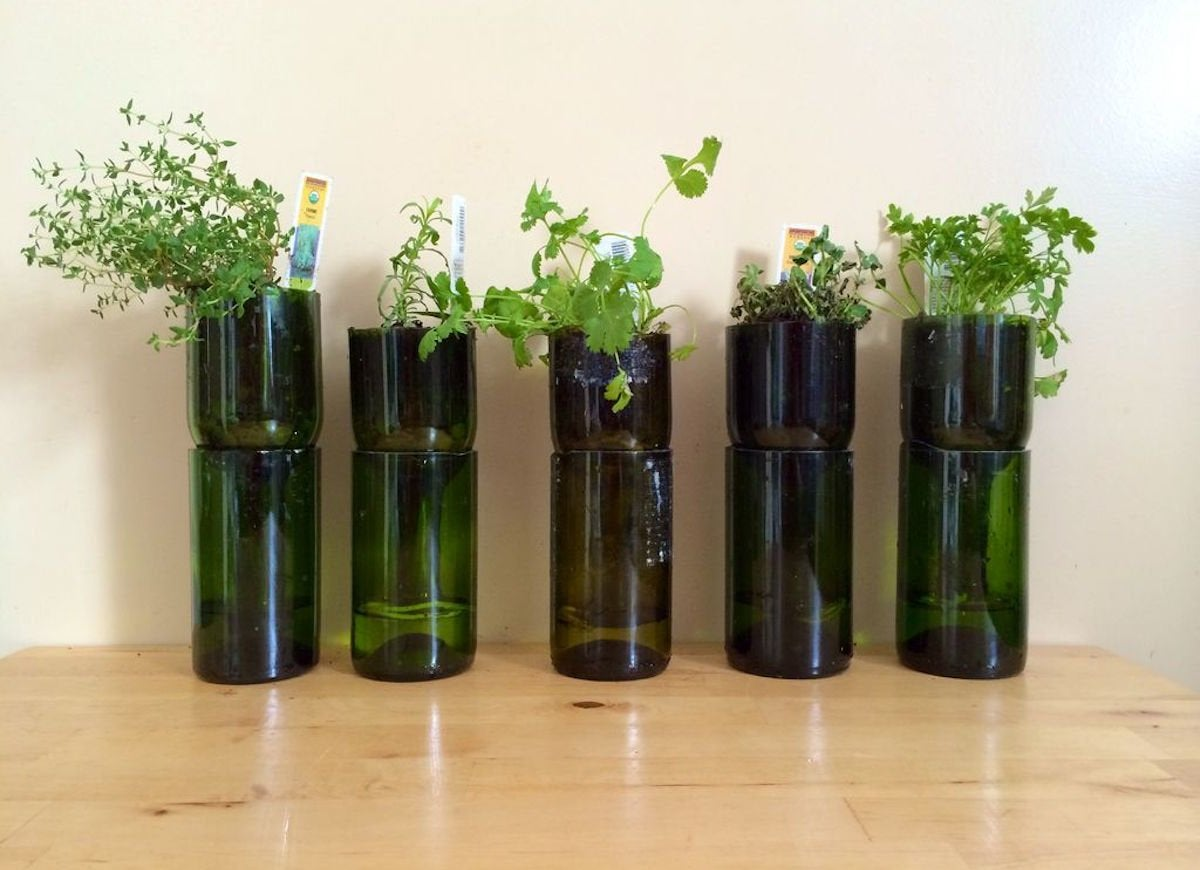 Glass wine bottle planters