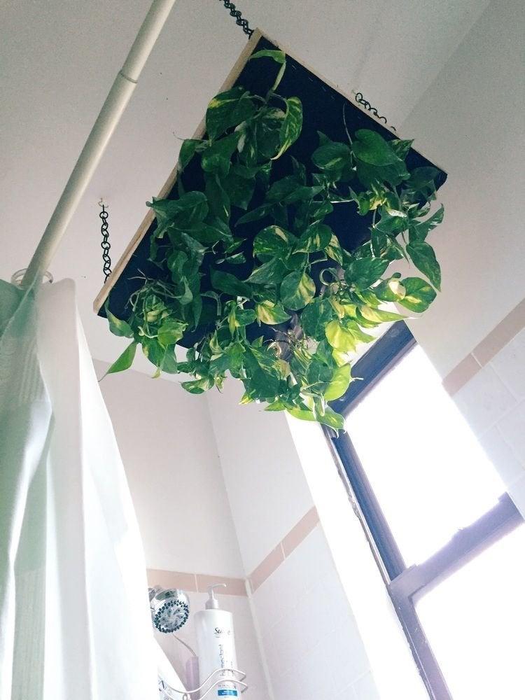 20 Ways To Garden Without A Backyard Bob Vila