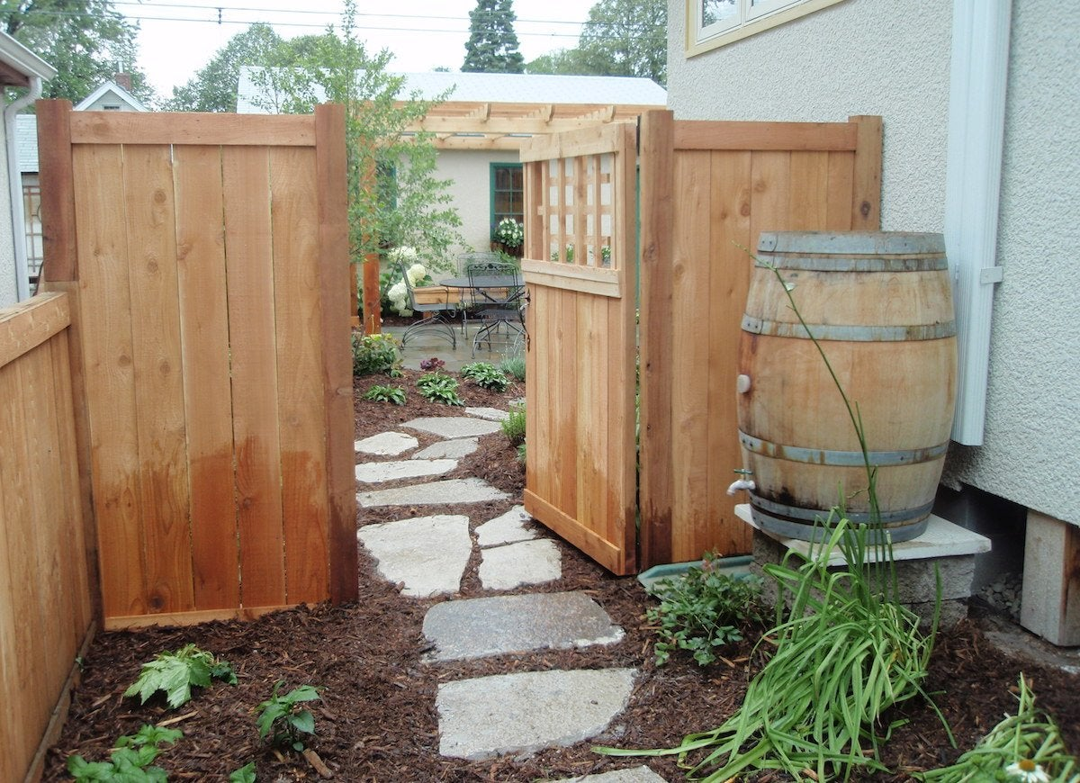Rain barrel side yard
