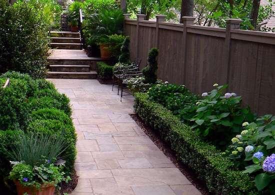 Choose Low-Light Plantings