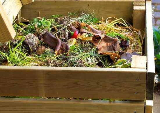 Construct a Compost Bin