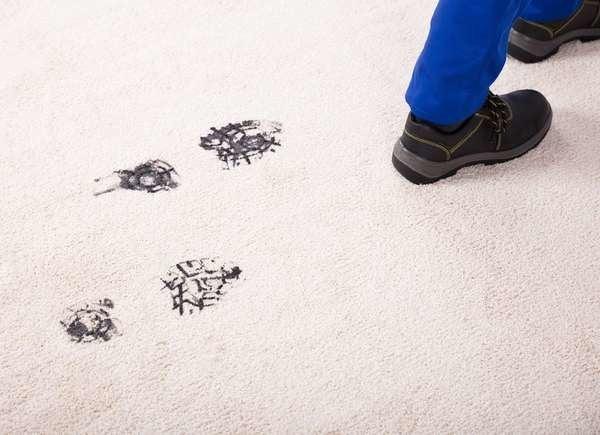 Dirt In Carpet