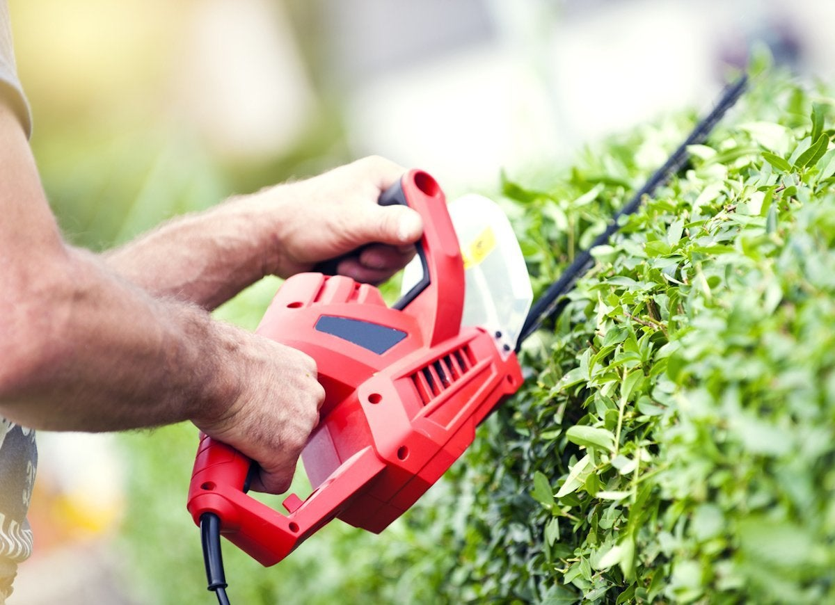 Electrical safety tips hedge trimmer