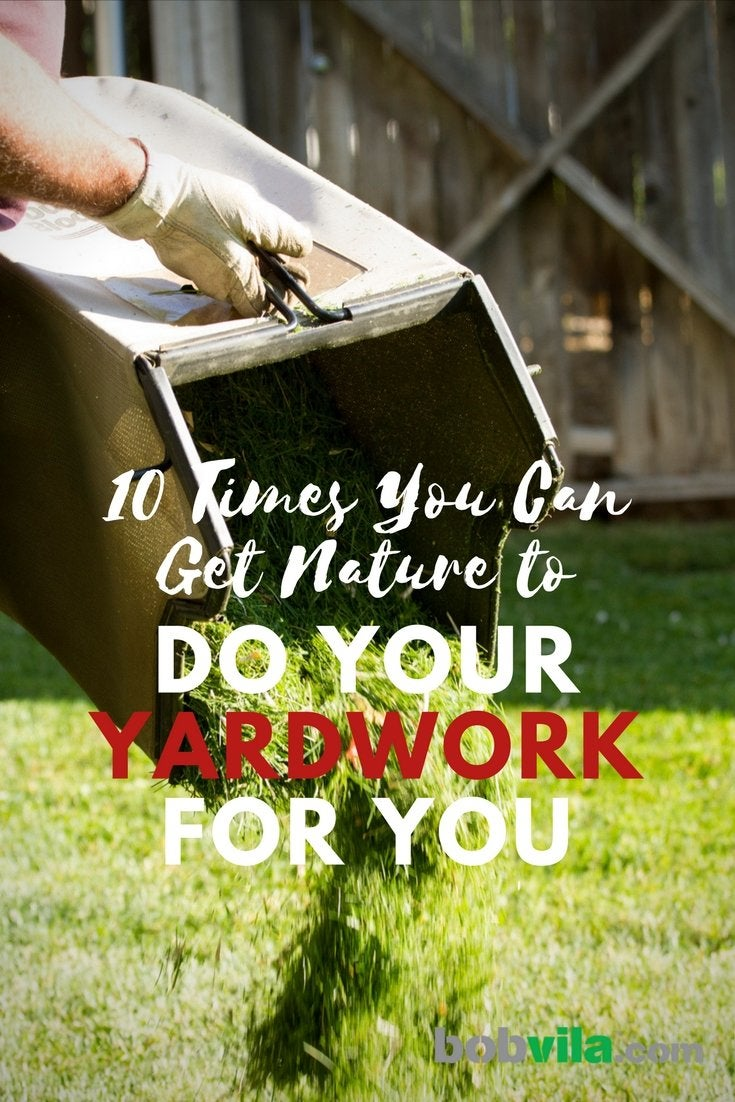 10 times you can get nature to do your yard work for you