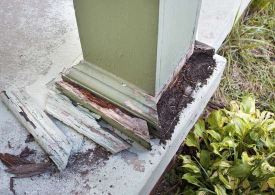 Selling Termite Damaged House