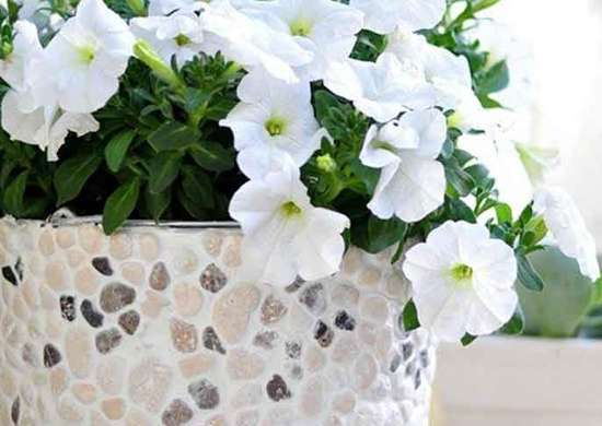 DIY Rock-Covered Planter