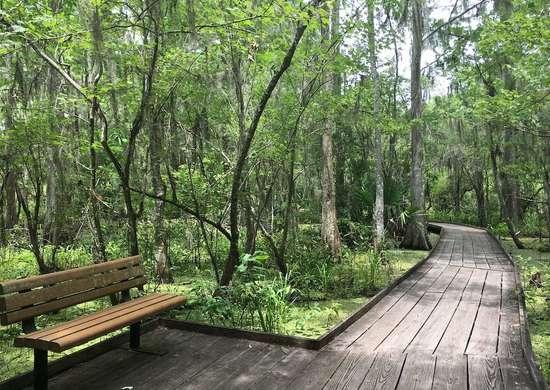 Louisiana: Barataria Preserve