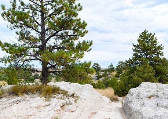 Wyoming: Oregon Trail Ruts State Historic Site