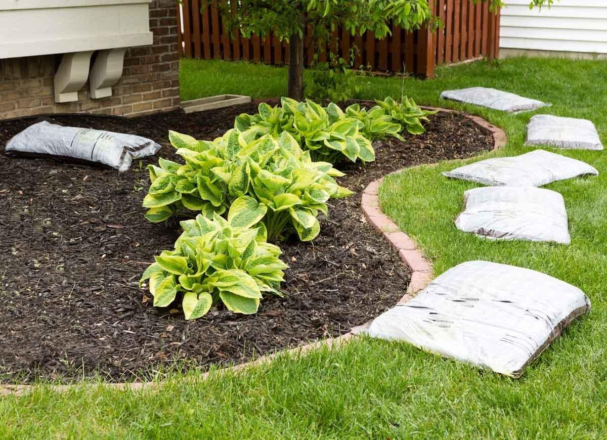 Mulch Your Garden