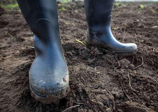 Can You Walk on Garden Soil?