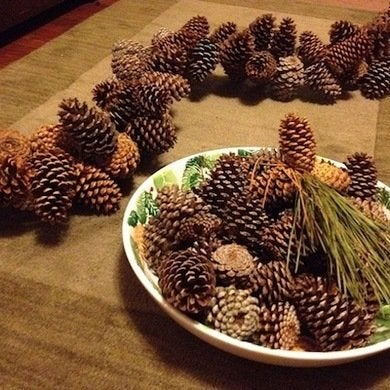 Pineconegarland1