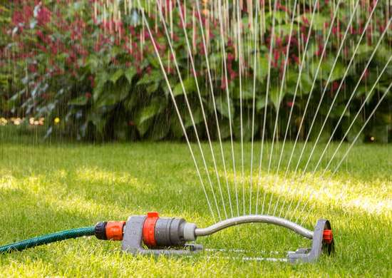 How Often To Water Lawn