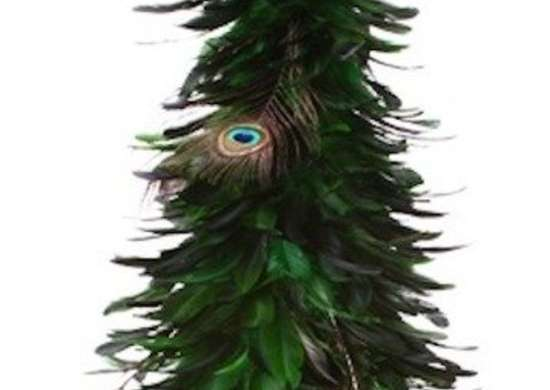 feather trees peacock
