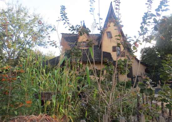 Witchy Landscaping