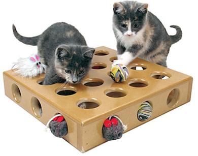 Wag smartcat peek a prize toyboxforcats