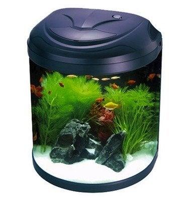 Aquarium-halfmoonbiotope-drsfostersandsmith