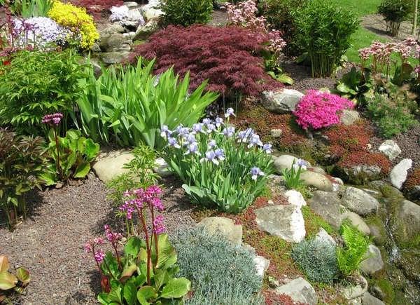 Rock Garden On Slope