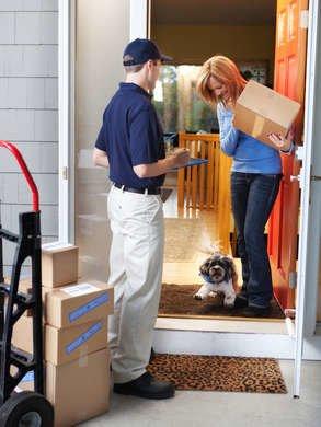 Dog Bites Mailman
