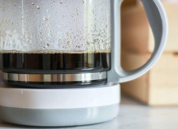 Bugs In Coffee Maker