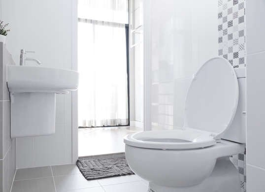 toilet seat up or down hygiene