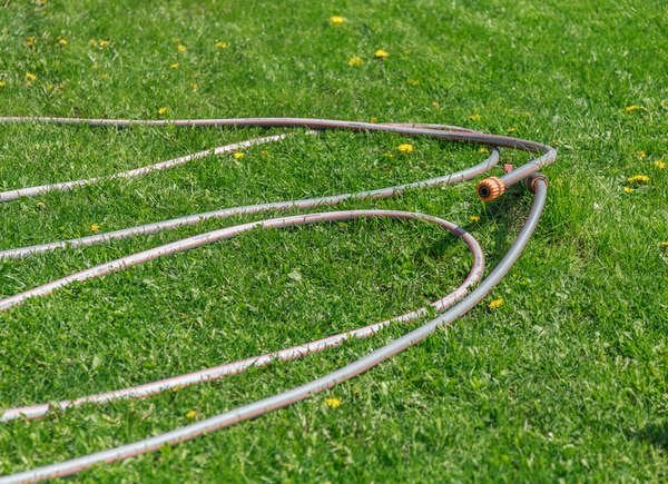 Garden hose should not be left in the yard
