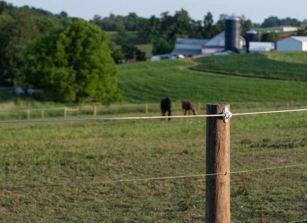 Electric wire fence for yard