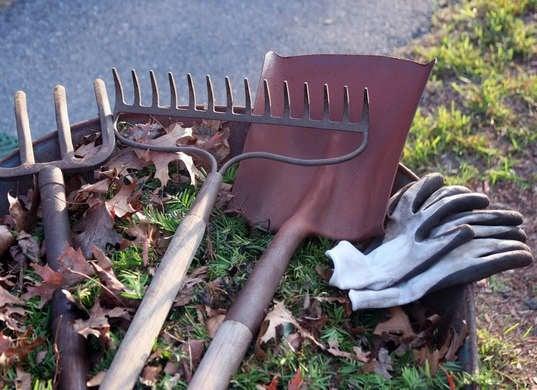 Clean Garden Tools