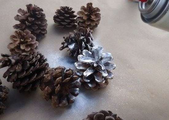Spray pinecone