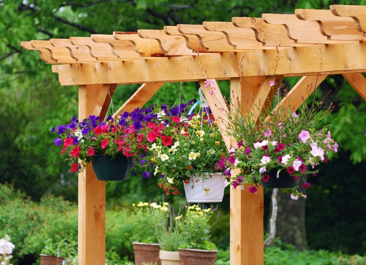13 Beautiful Ways to Use a Backyard Pergola