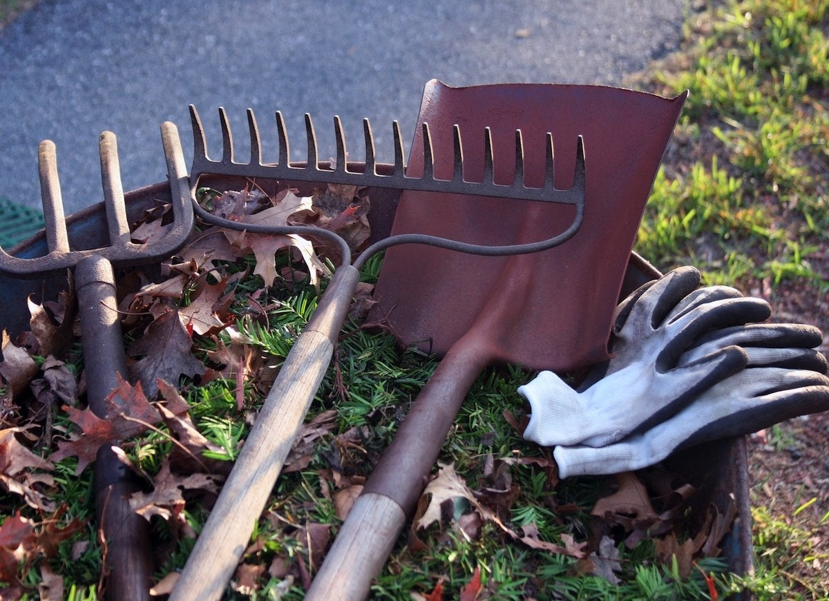Must have gardening tools