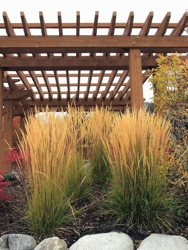 12 Fall Landscaping Mistakes To Know And Avoid Bob Vila