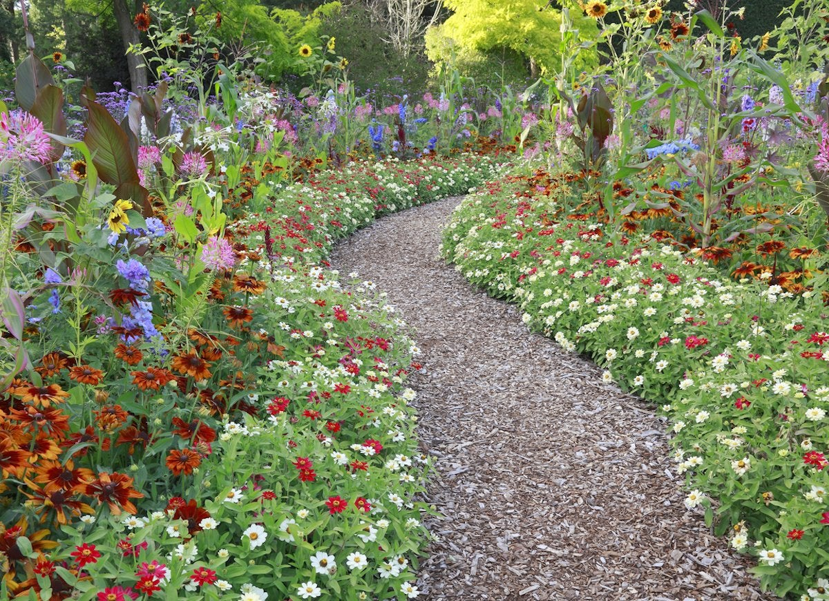 Bark Mulch Is A Budget And Diy Friendly Material To Keep In Mind For No Small Number Of Ealing Walkway Ideas This Path Skips Extra Decorations