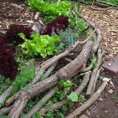 Branch BorderBranch Border   DIY Garden Edging   Bob Vila. Diy Landscaping Borders. Home Design Ideas