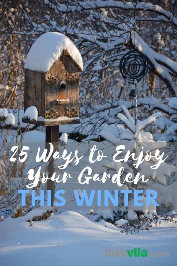 Winter Gardening 25 Ways To Enjoy Your Garden This Winter Bob Vila