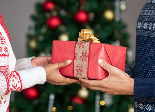 Holiday Gifts For Homeowners All Under 50 Bob Vila