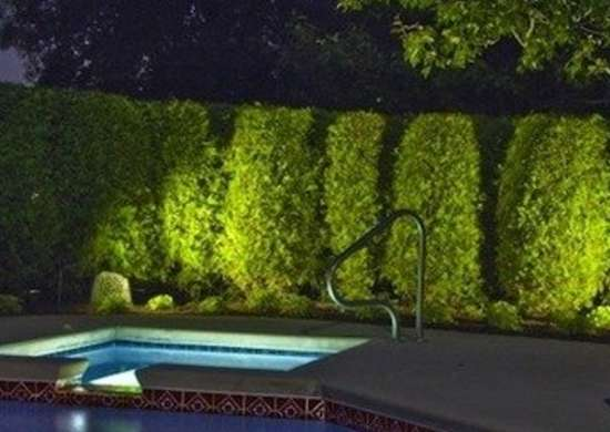 Illuminated trees poolside outdooraccentslighting