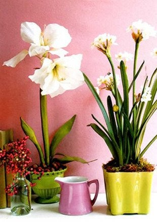 Real-life-decor-jean-nayar-floral-containers-bob-vila-green