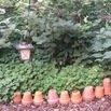 Flower Pot Border
