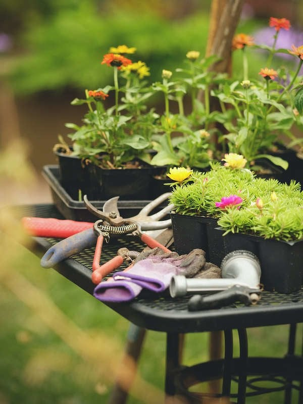 Best Garden Tools For Lazy Gardeners Bob Vila