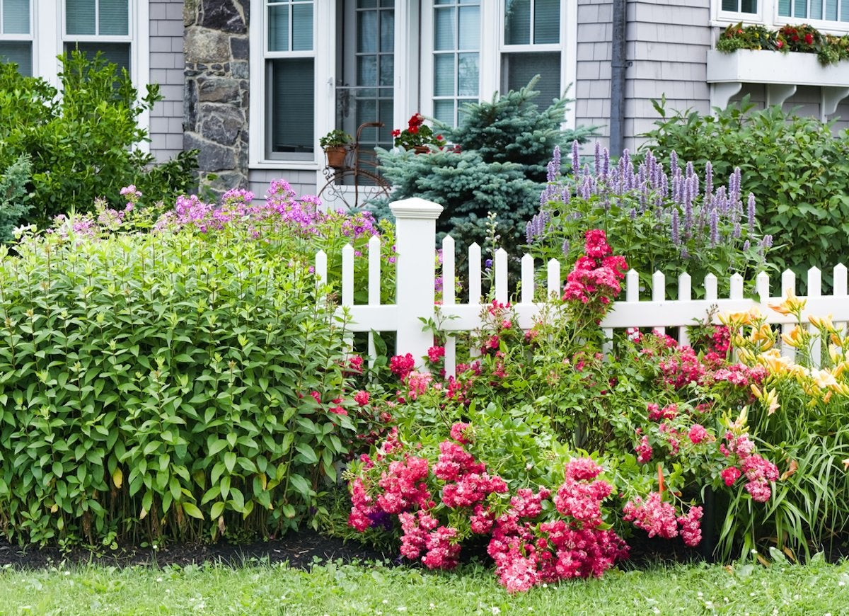 Low Maintenance Landscaping - 25 No-Effort Landscape Ideas - Bob Vila