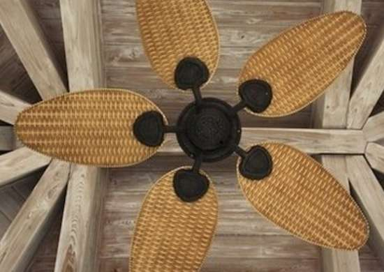 Ceiling-fan1